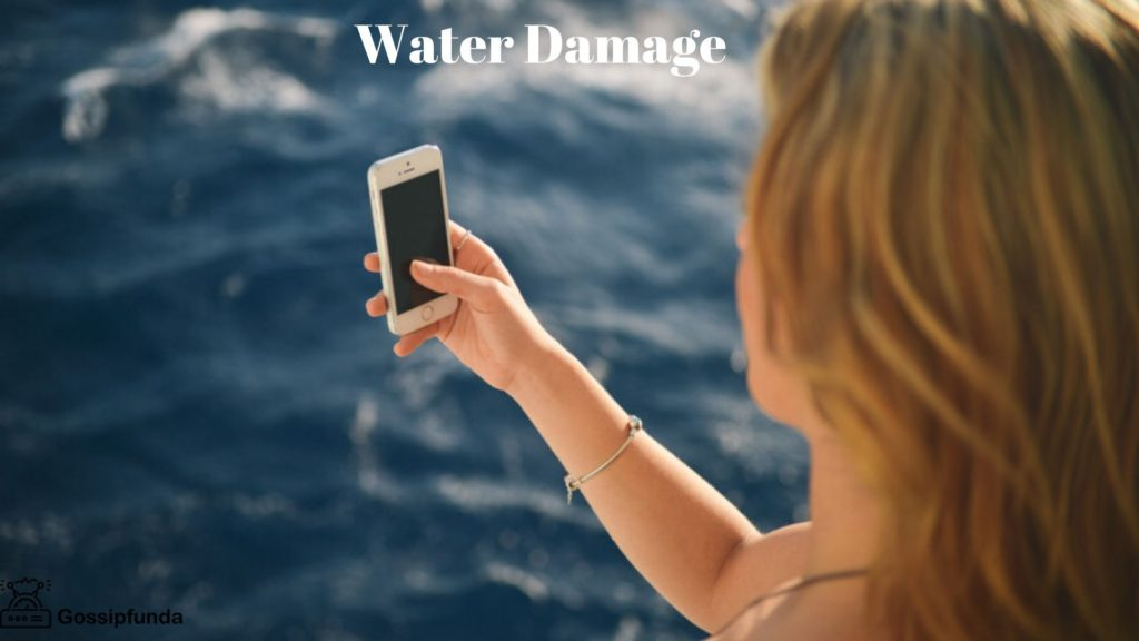 No Service On iPhone- Water Damage