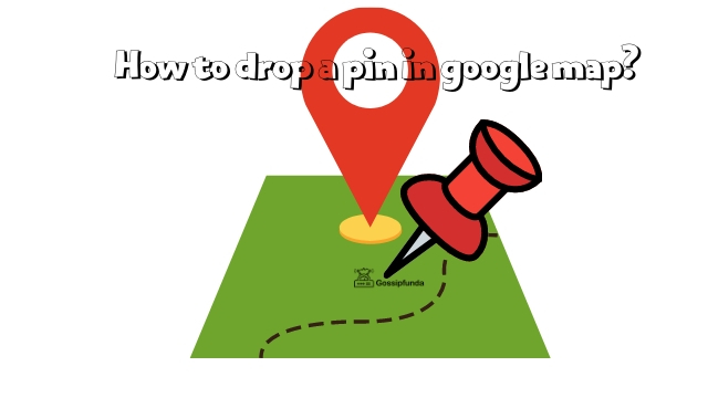 How to drop a pin in google map?