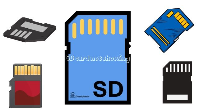 sd card not showing